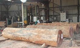 Transformation du bois